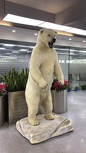 Polar Bear Full Mount