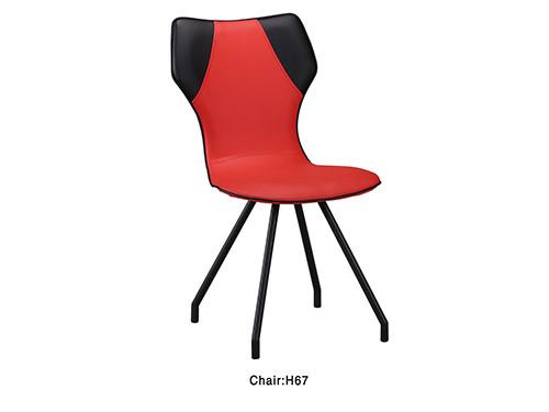 H67  Modern Stylish Dining Chair